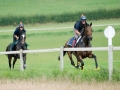 1524-gallops-2