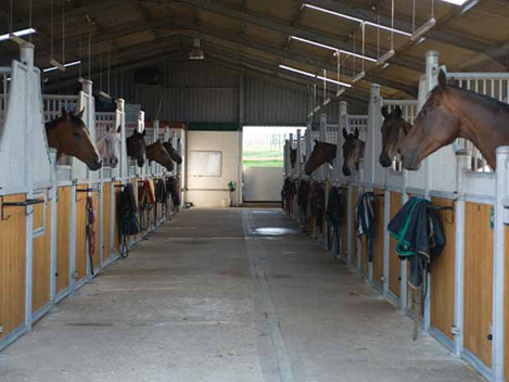 2604-stables-horses